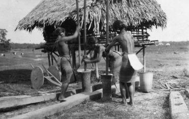 Les tribus Moïs